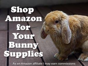 rabbit shopping