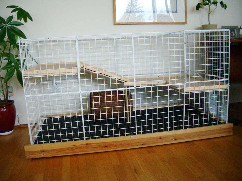 Lara and Harrel's deluxe, wide rabbit condo